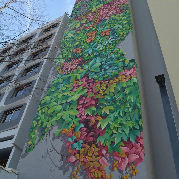 Mur Chambery thème libre